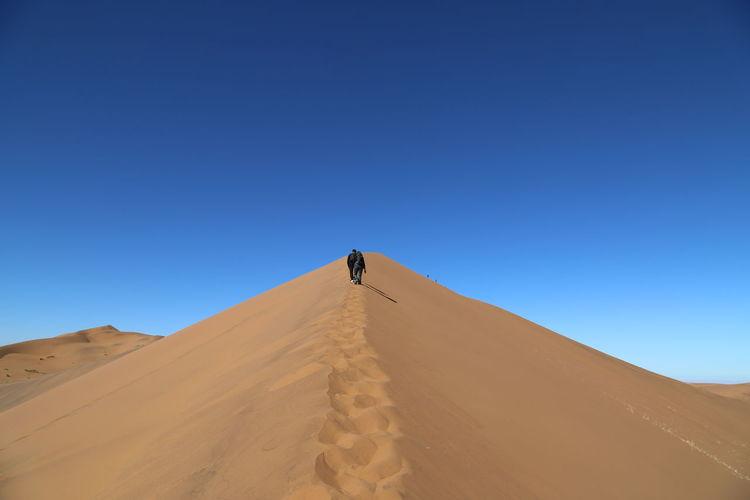 Rear view of people walking at desert