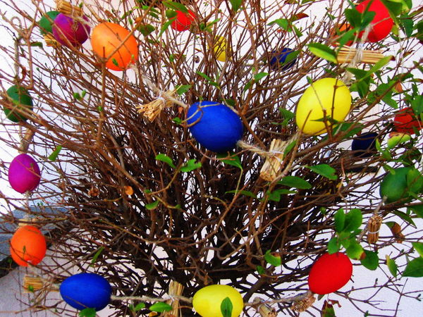2004 Bare Tree Celebration Colored Eggs Day Hanging Low Angle View Multi Colored No People Outdoors Rabland,sudtirol Tradition
