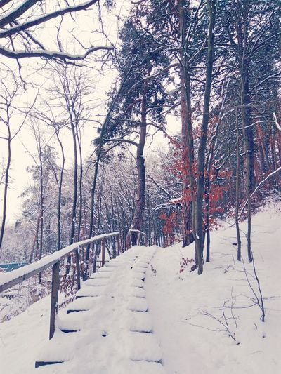Winter snow Snow Kiev Київ Instakiev