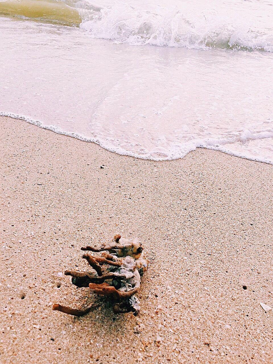 WATER ON BEACH