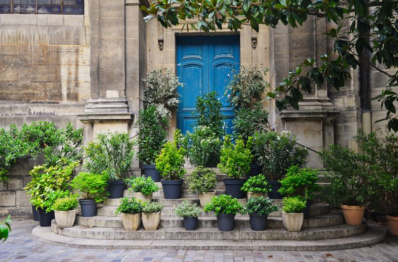 Architecture Building Building Exterior Built Structure City Courtyard  Day Flower Pot Front Or Back Yard Green Color Growth Houseplant In A Row Nature No People Outdoors Plant Potted Plant Residential District Tree