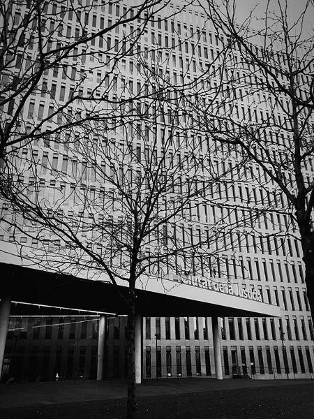 Ciutat de la justicia Blackandwhite Photography Blanco Y Negro Arquitectura Barcelona Arquitecture Juzgados Hospitalet De Llobregat Ciutatdelajusticia, Architecture Bare Tree Built Structure Building Exterior Outdoors Tree Colour Your Horizn