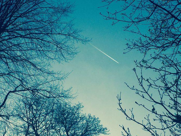 Blue Sky Jet