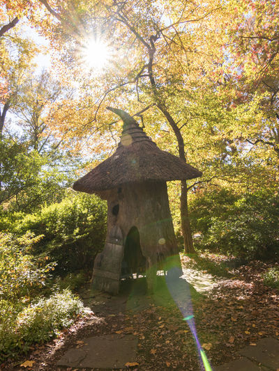Who dwells here? Architecture Autumn Colors Cottage Elf House Growth Hobbit House Nature No People Sun Flare Thatched Roof Tree
