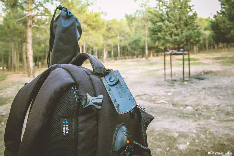 Color Photography Vanguard Canon Bag Remember Photography Jungle Colorful Photoshop Feeling Forest Light And Shadow Canonphotography Landscape Nature Effect Technical Sun Taking Photos