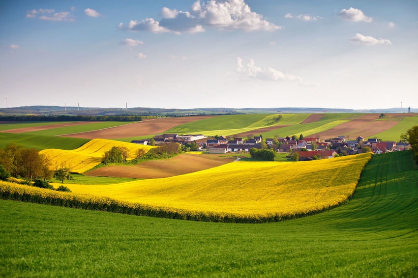 Agriculture Beauty In Nature Day Farm Field Grass Green Color Growth Landscape Lush - Description Nature No People Outdoors Rural Scene Scenics Sky Social Issues Summer Sunlight