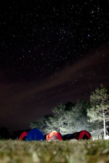 stars Tent Star - Space Camping Night Nature Beauty In Nature Tranquility