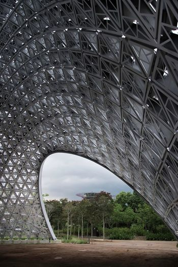 Garden By  The Bay Singapore Sky Architecture Built Structure Bridge - Man Made Structure Arched Nature