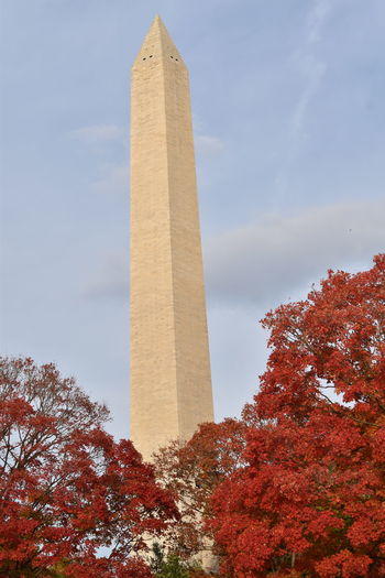Beautiful fall foliage surrounding the Washington Monument #nationalmall #trees #WashingtonDC #washingtonmonument Bestoftheday #contestgram #instamood #dailyphoto #primeshots #ig_captures #clouds #sky #cloud #blueskys #sunshine #cloudporn #skyporn #skysnappers #nature #blue #light #skylovers #skystyles_gf #cloudy #iloveclouds #cloudscape Instagood, #tweegram #photooftheday #sketch,#sketchclub,#malen,#painting,#instagram,#picoftheday,#art,#star,#followme,#follo Sky #clouds #nature #autumn #photografy Trekking #travelling #sightseeing