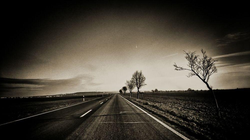 At twilight Vanishing Point Road On The Road Sky Sunset Skyline Winter Golden Moment
