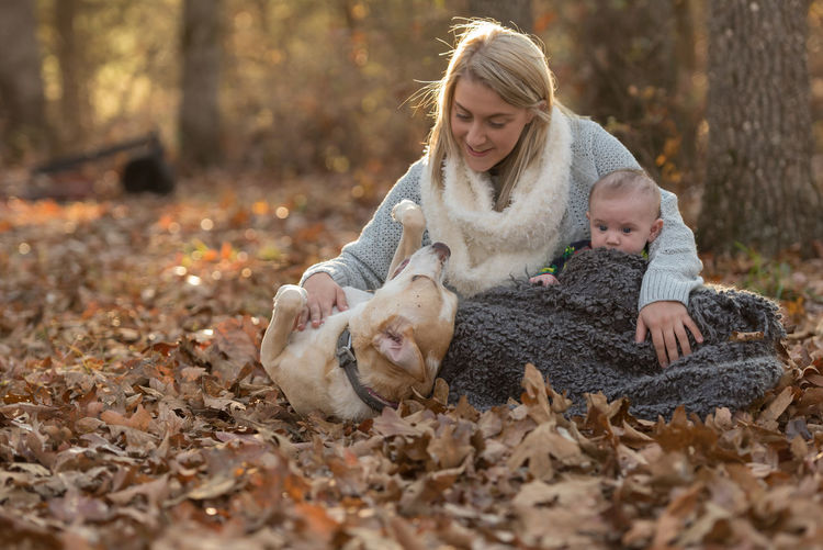 Woman holds her baby while playing with a dog Autumn Baby Bonding Childhood Companion Dog Family With One Child Leaf Lifestyles Love Nature Pets Togetherness Fresh On Market 2018
