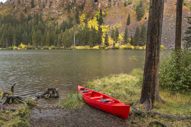 Kayak at lake Water Tree Nautical Vessel Lake Nature Day Transportation Beauty In Nature Red Mode Of Transportation No People Tranquility Scenics - Nature Outdoors Lakeshore Tranquil Scene Kayak Autumn colors Fall Colors