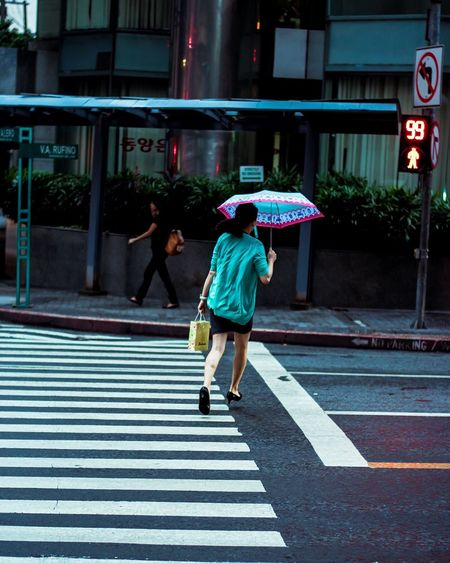 Rear view of woman holding umbrella while crossing road in city