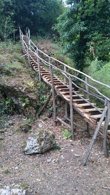 Treppe, litermont
