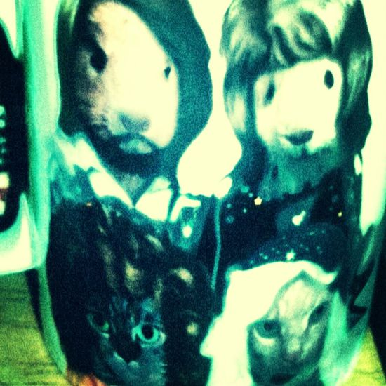 A present from my sister of ABBA as animals loving it