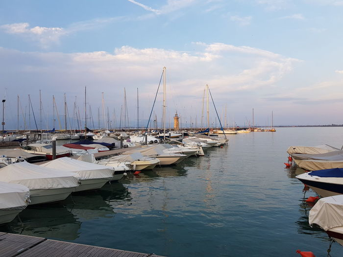 Sailboats in marina