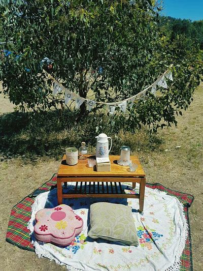 Festival Festival Season Tree No People Outdoors Water Nature Day MakeFriends Teatime Tea Time Teatime☕️ Letsbefriends Friendship Live For The Story