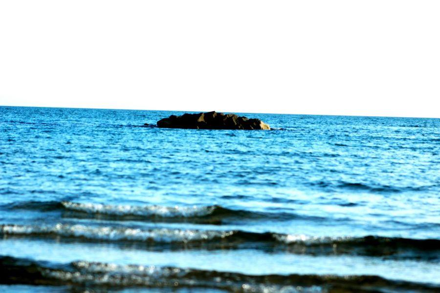 Island Island Coastal Sea Beach And Sky Beachphotography Blue Water Shore Italy🇮🇹 Sohan Water Sea Clear Sky Beach Sea Life Blue Wave Sky Horizon Over Water Close-up Cormorant  Pelican Beak Underwater Ocean Floor