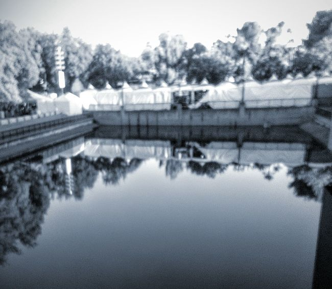 Reflections And Water Reflections In Water Tree Porn Trees And Water Showcase July Reflections In The Water Reflections On The Water Waterscape Water Photography California State Fair Sacramento, California My Photography And Edit Taking Photos ❤ This Week On Eyeem Eyeem Black And White Photography Black And White Photography
