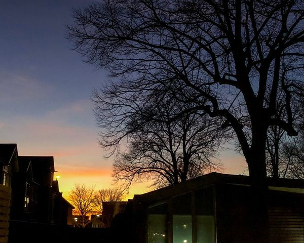 Evening sky Architecture Bare Tree Silhouette Built Structure Building Exterior Sunset Tree Sky Low Angle View No People Outdoors Travel Destinations Scenics Nature Beauty In Nature City Day