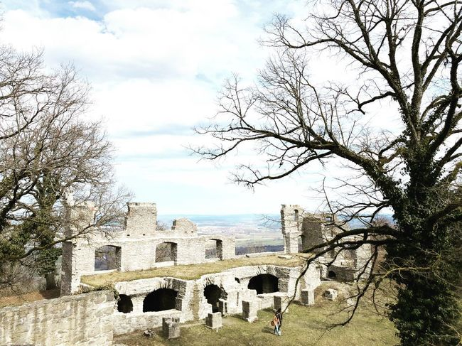 Fortress Ruins Germany Singen (Hohentwiel) Singen Tree Plant Sky Architecture Built Structure Nature Cloud - Sky Building Exterior Day Outdoors No People History City Bare Tree Branch Travel Destinations