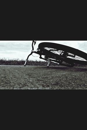 Bike Dirt Specialized Slopestyle
