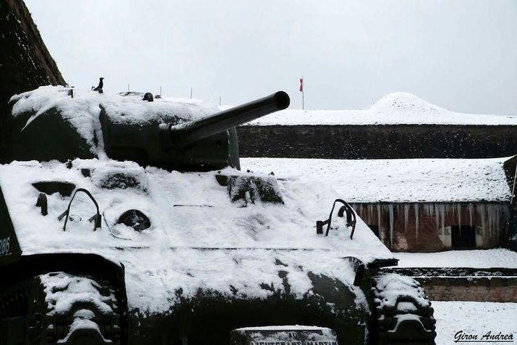 Blanc Belfort Citadelle De Belfort Neige❄ Snow ❄ Hiver