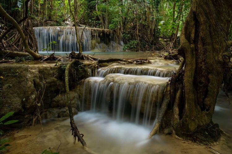 Waterfall Water Long Exposure Motion Flowing Water Nature Beauty In Nature Forest Tree River No People Scenics Outdoors Day