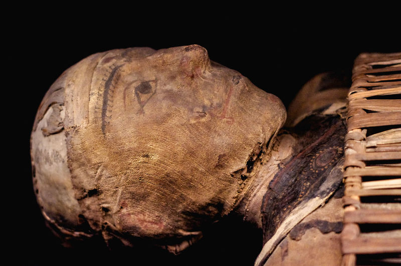 Mummy's face Archeology EmNewHere Antiquity Archeological Black Background Close Up Close-up Culture Egyptian Embalmed Face History Mummy Museum No People Old Relic