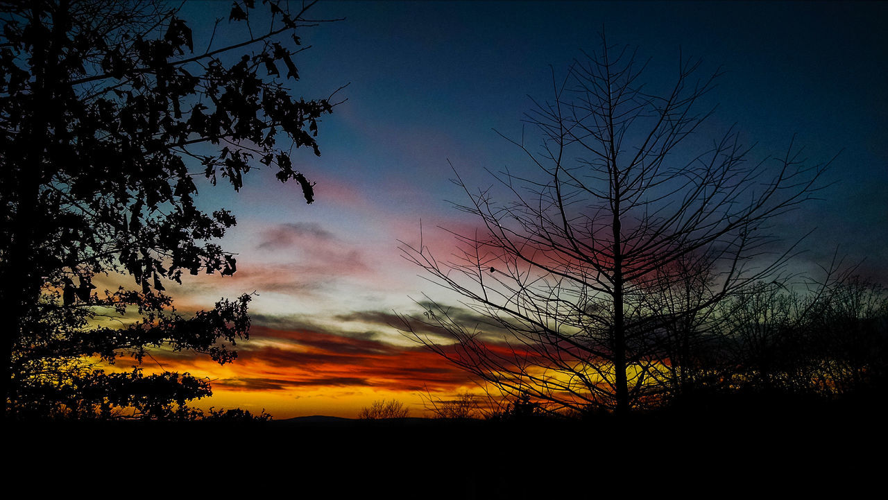 silhouette, tree, beauty in nature, sunset, tranquil scene, nature, scenics, tranquility, sky, no people, idyllic, outdoors, cloud - sky, landscape, bare tree, branch, day