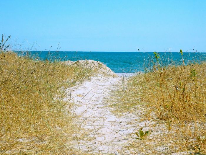 Sea Horizon Over Water Beach Water Sand Blue Tranquility Tranquil Scene Beauty In Nature Clear Sky Nature Shore Non-urban Scene SeaPathway Pathway To Heaven Shores Pathway To The Sea Pathway To The Beach Pathway To Beach Calm Outdoors Pathway Of Peace Seascape Beach