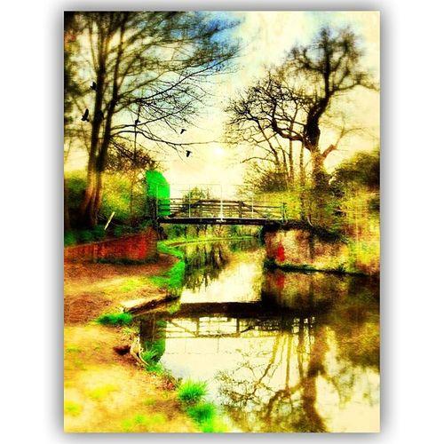 #squaready #distressedfx #handyphoto #iphone #ipad #byfeet #byfleetvillage #surrey #uk #tinyshutter #canal # IPhone Canal Ipad Uk Surrey DistressedFX Squaready Tinyshutter Handyphoto Byfleetvillage Byfeet