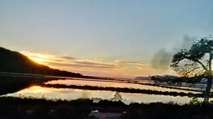 Ibiza_2016 Travel Photography Landscape_Collection Ibiza Sunset Discover The World Traveltheworld Winter Trees Color Explosion