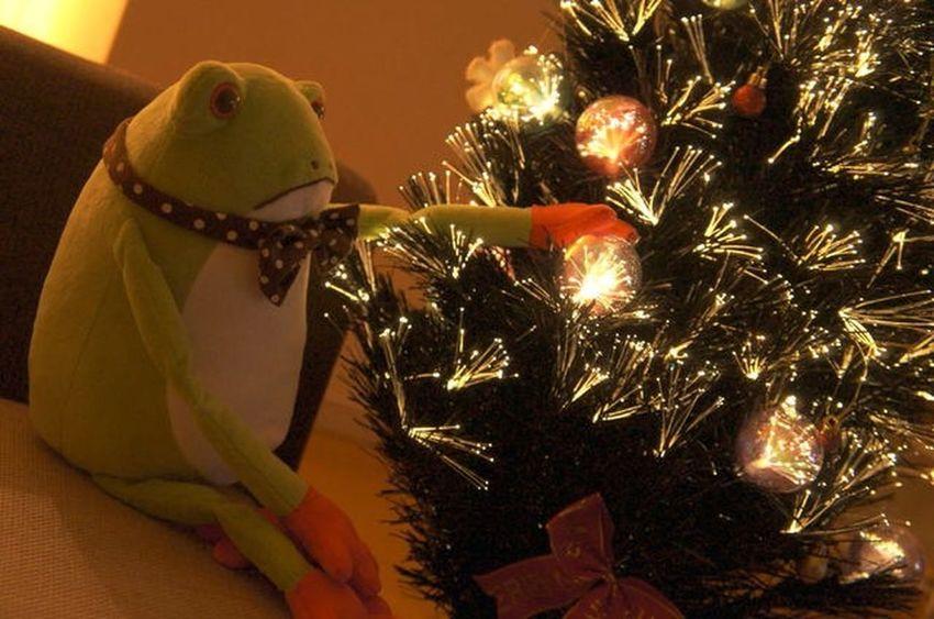 2014.Xmas Xmas Christmas Christmas Tree Christmastime