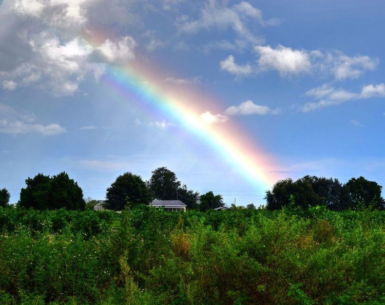EyeEm Nature Lover Tadaa Community Rainbow EyeEm Best Shots - Nature