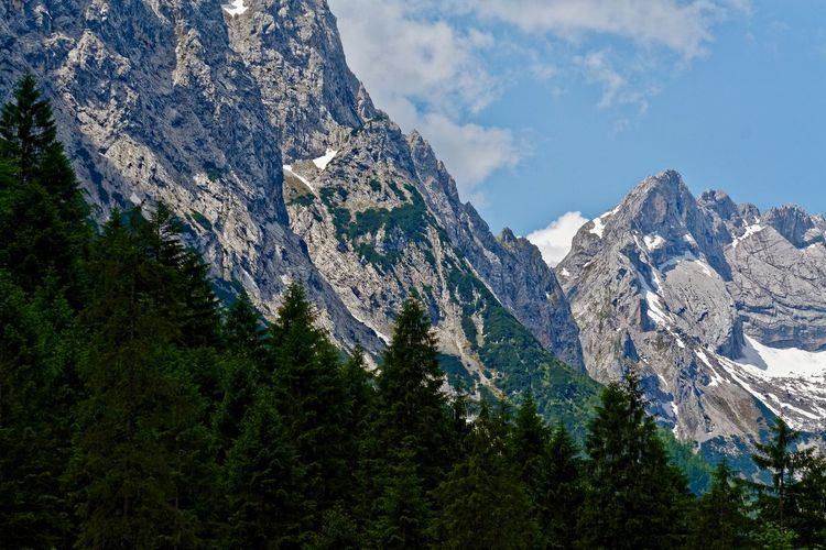 Beauty In Nature Day Forest Landscape Mountain Mountain Range Nature No People Outdoors Pine Tree Scenics Sky Snow Spruce Tree Tree