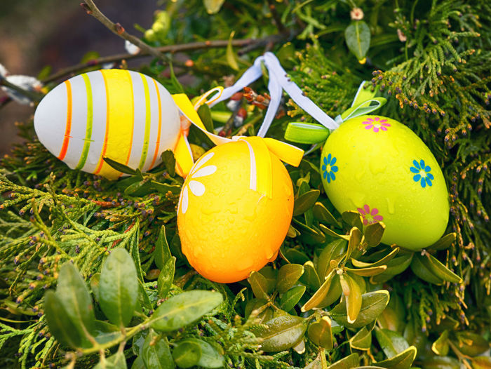 Easter Easter Easter Egg Easter Hunt Easter Ready Easter Eggs Fountain Close-up Egg