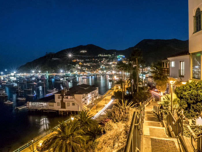 Night Scene Vantage Point Architecture Avalon Blue Building Exterior Built Structure Catalina Catalina Island  City Lights Cityscape Clear Sky High Angle View Illuminated Mountain Nature Night No People Residential Building Sea Sky Stairways Town Tree Water