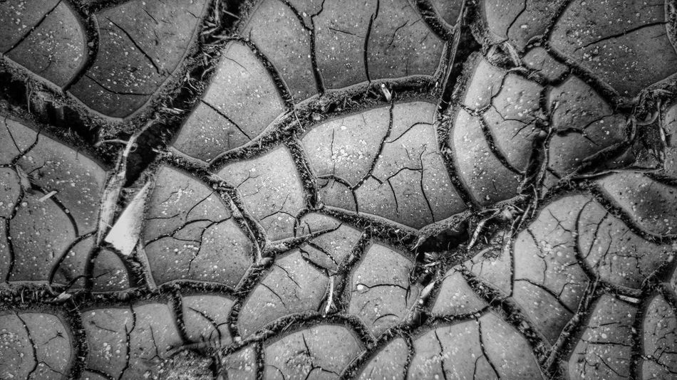 Earth crust No People From My Point Of View EyeEm Gallery Eyeem Market Getting Creative Walking Around Nature Nature_collection Naturelovers Naturephotography Nature's Diversities Nature_perfection The Great Outdoors The Great Outdoors Nature Monochrome Photography Black And White Black And White Photography Black And White Collection  Black & White Long Goodbye Art Is Everywhere Breathing Space Your Ticket To Europe The Week On EyeEm EyeEmNewHere Mix Yourself A Good Time Been There. Discover Berlin Connected By Travel Done That. Lost In The Landscape Second Acts Be. Ready. Black And White Friday EyeEm Ready   AI Now An Eye For Travel Go Higher This Is Aging