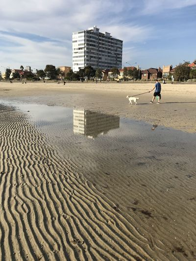 Man walking a dog through the space of the building and reflection. Sand Architecture Built Structure Building Exterior Sky Land Beach Cloud - Sky Nature Day City Incidental People Real People Water People Lifestyles Men Outdoors Sea Victoria St Kilda St Kilda Beach