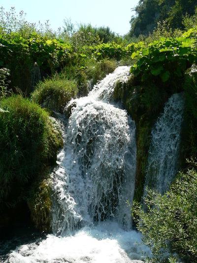 Waterfall in grass
