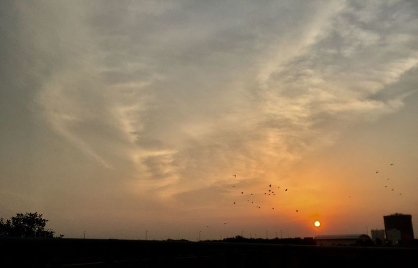 Countdown to Sunset Sky Sunset Cloud - Sky Beauty In Nature Silhouette No People Nature Orange Color Scenics - Nature Bird Tranquility Large Group Of Animals Flying Animal Themes