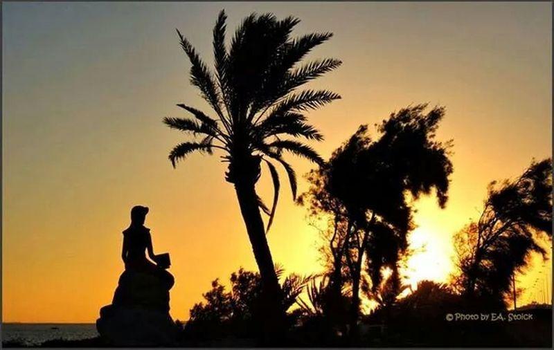 Good morning ,sunrise at Djerba ♥♡♥ Bonjour , Lever Du Soleil à Djerba Tunisia Love, Life