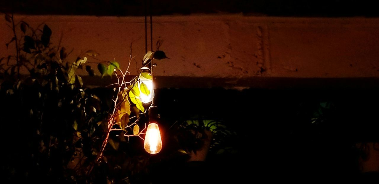 fauna and flares IndiaTrip Hyderabad Artistic Bulbs Bulbphotography Bulb Light Light Illumination Wall Leaves Plant Creeper Plant Night Flame Burning Heat - Temperature No People Illuminated Metal Industry Indoors  Close-up