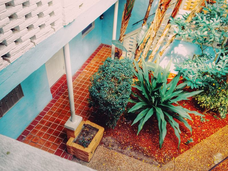 A Bird's Eye View From The Balcony My Point Of View