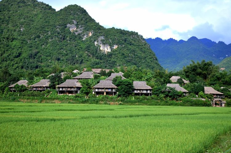 EyeEm New Here EyeEm Nature Lover Sustainability Rice Fields  Ecolodge Vietnam House Built Structure Building Exterior Hut Mountain Grass Architecture Agriculture Field Green Color Rural Scene Scenics Landscape Nature Outdoors Beauty In Nature Thatched Roof No People Sky An Eye For Travel