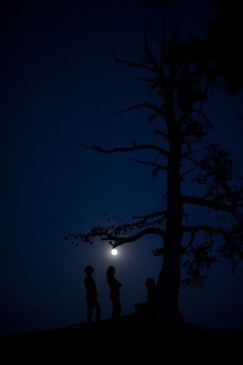 Astronomy Beauty In Nature Illuminated Low Angle View Moon Moonlight Connected By Travel Nature Night Outdoors Real People Silhouette Sky Standing Star - Space Tree