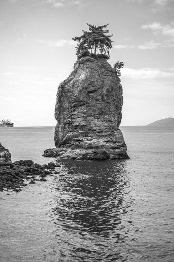 Beautiful Nature Beauty In Nature Black And White Canada Cloud - Sky Day Horizon Over Water Island Landscape Nature No People Outdoors Pacific Northwest  Rock Scenics Sea Sea And Rock Siwash Rock Sky Stanley Park, Vancouver Tranquility Tree On Top Of The Rock Vancouver Vertical Water