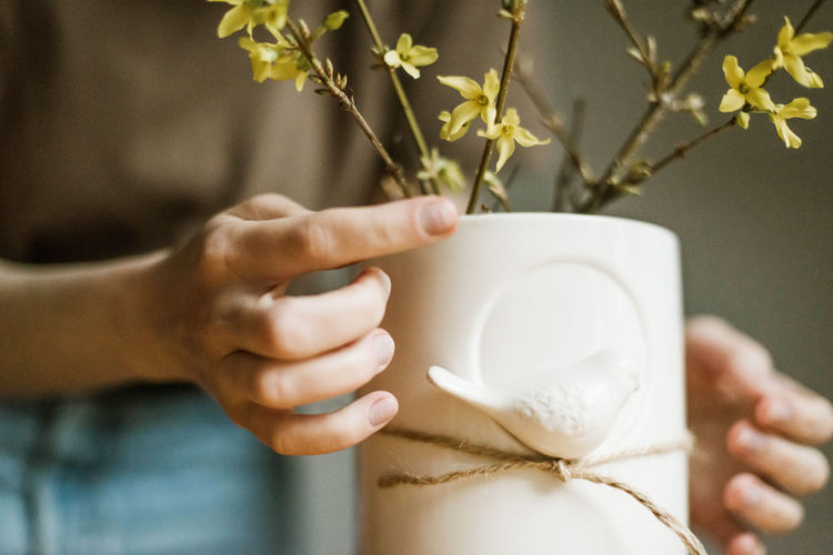 Close-up of woman hand holding white flowering plant