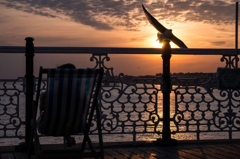 Person Sitting On Chair At Pier Against Sea During Sunset